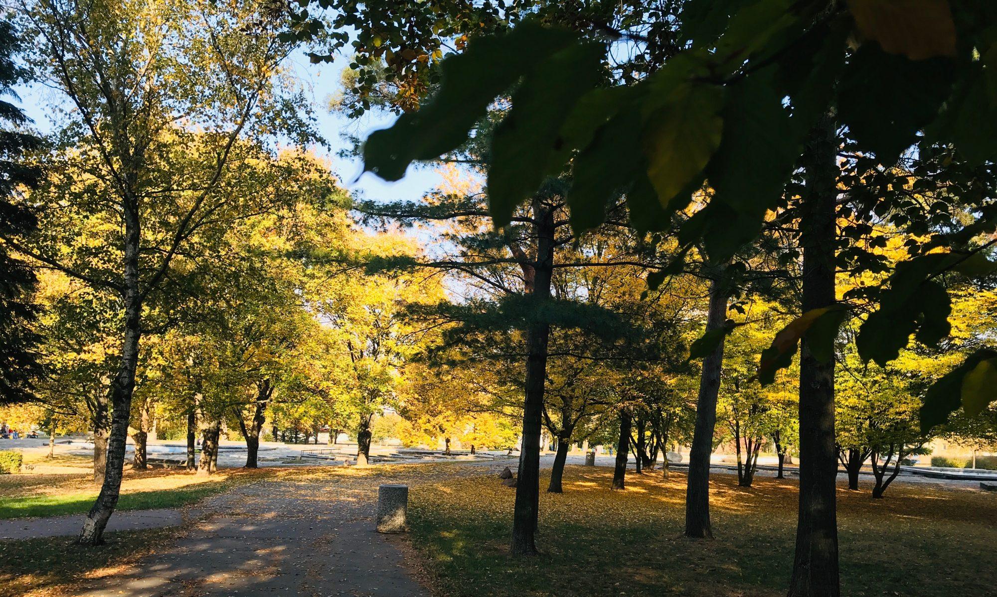 Park střed