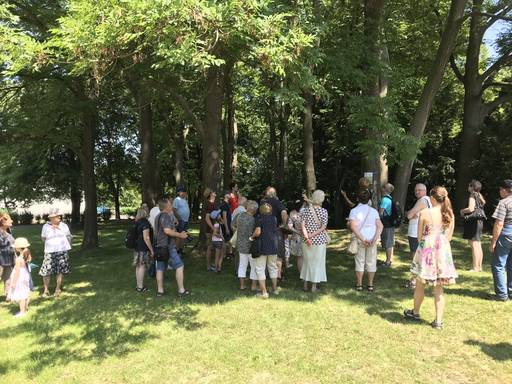 Víkend otevřených zahrad 2019 - Prohlídka parku s dendrologem